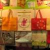 2013第12届秋季广州国际环保袋购物袋展&包装袋展