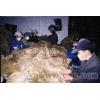 供应 埃及纯天然亚麻纤维